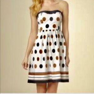Limited polka dot strapless navy white dress short
